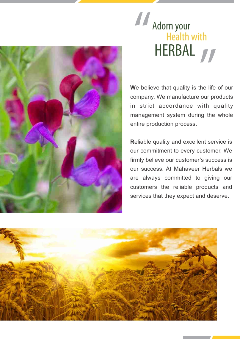 Herbal Extract Page 03