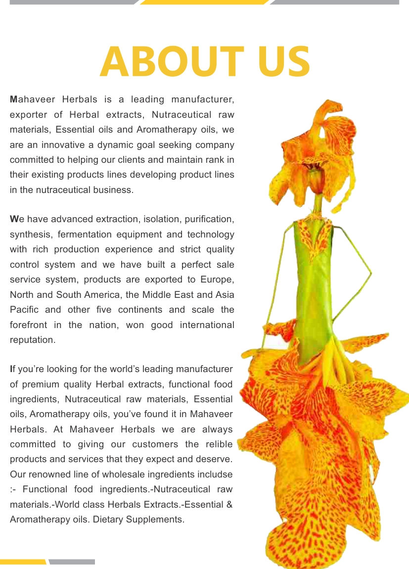 Herbal Extract Page 02